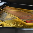 1919 Steinway Long A Grand Piano - Grand Pianos