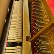 2001 Polished Walnut Petrof Studio - Upright - Studio Pianos
