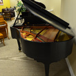 1999 Pramberger Baby Grand Piano - Grand Pianos