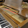 1917 Steinway Model O Grand Piano - Grand Pianos