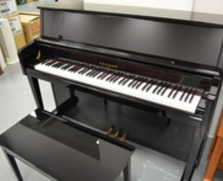 Kohler & Campbell KC-245 Studio Piano