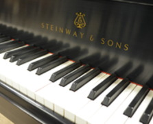 Steinway Model D 9 foot concert grand