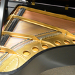 1956 Steinway Model M Grand Piano - Grand Pianos