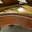 1905 Steinway Louis XV, Sketch 301 - Grand Pianos