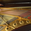 1891 Steinway Model B with Flowerpot Legs - Grand Pianos
