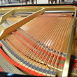 2004 Boston GP-156 PE II Grand Piano - Grand Pianos