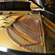 1964 Steinway B. Deal of the Century. - Grand Pianos