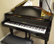 Yamaha DGH1 Player Grand