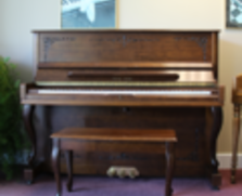 Young Chang professional upright